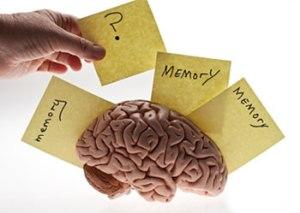 memory_misconception_survey