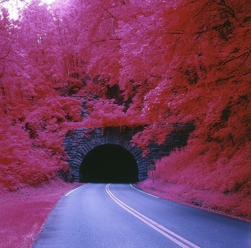 tunnel of love kleven ukraine
