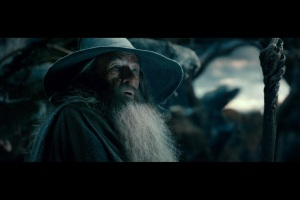 the.hobbit.the.desolation.of.smaug.movie.poster.o.hobbit.a.desolação.de.smaug.dragão.wallpaper.gandalf.the.grey