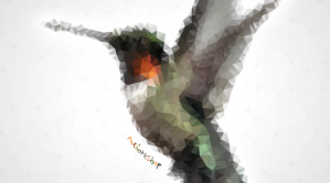 Colibri-Poligon-mxworkshop-NT-Insta-Abr2014-672x372