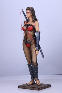 Lady-Ninja-2