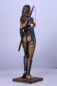 Lady-Ninja-4