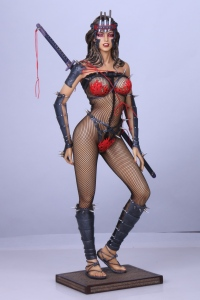 Lady-Ninja-5