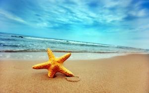 sand-and-sea-19